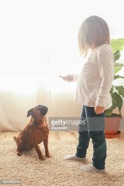 Little girl training her dog to sit at home