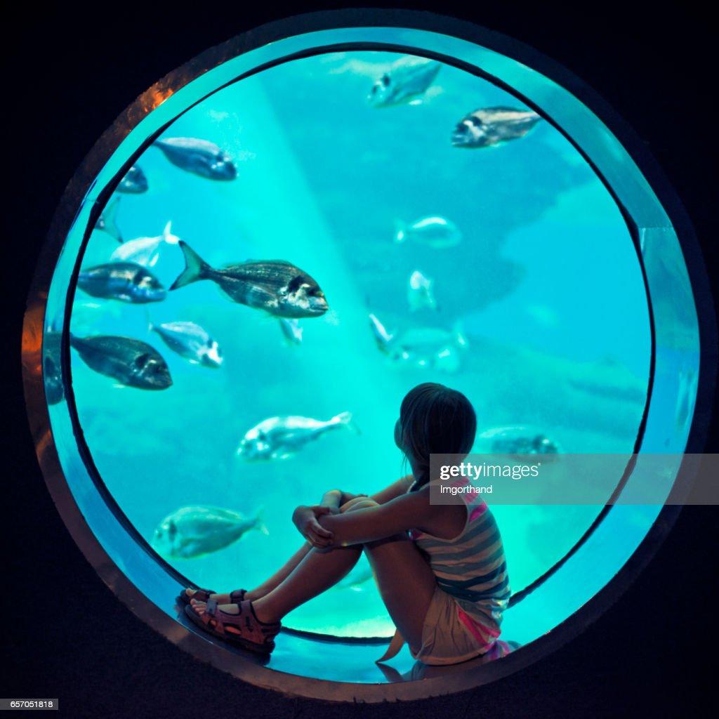 Little girl visiting a huge aquarium : Stock Photo