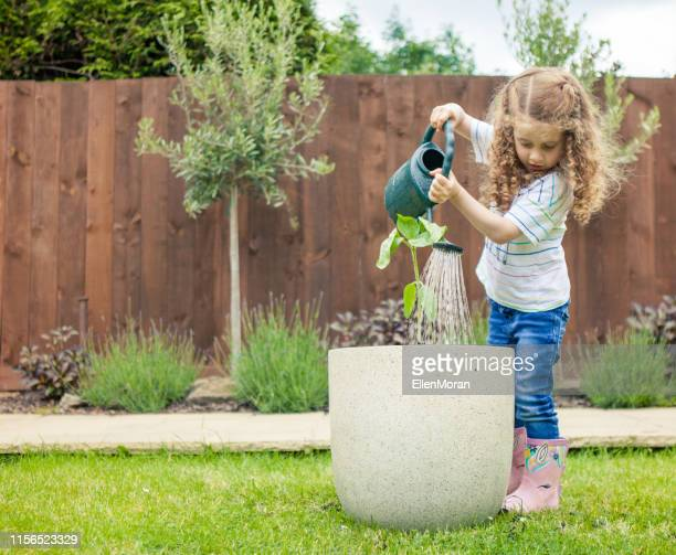 little girl with a watering can - plant stock pictures, royalty-free photos & images