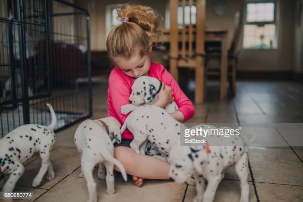 Little Girl with Dalmatian Puppies