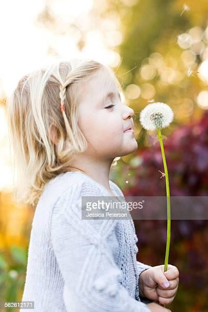 Little girl (2-3) with dandelion