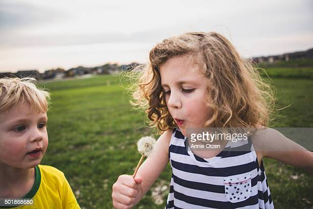 Little girl with dandelion while brother looks on