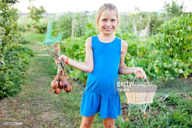 Little girl with fresh harvested onion