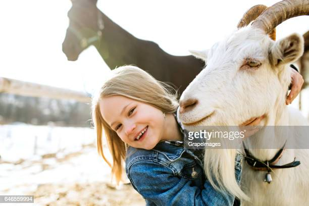 Little girl with goat and horse on sunny winter day.