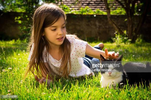 little girl with her cat on a meadow - larissa veronesi stock-fotos und bilder
