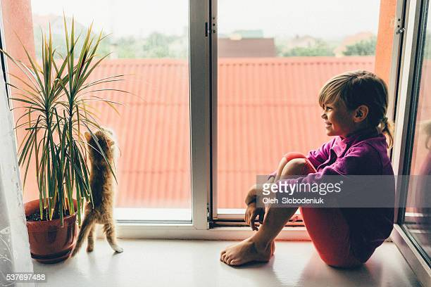 little girl with kittens - persian girl stock photos and pictures