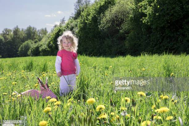 little girl with origami rabbit on meadow - animali pasquali foto e immagini stock