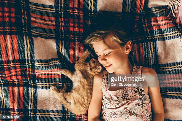 little girl with  the kitten - persian girl stock photos and pictures