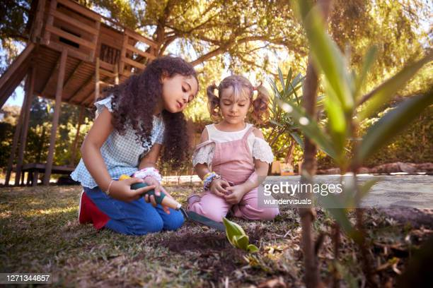 little girls gardening plant on hole whith shovel in garden - preschool child stock pictures, royalty-free photos & images