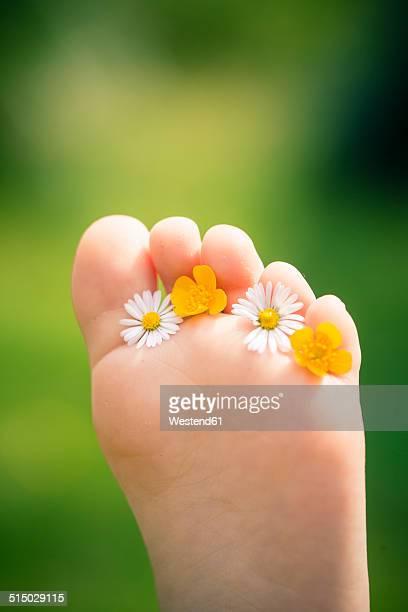 little girl's sole of foot holding daisies, bellis perennis, and buttercups, ranunculus - maya desnuda fotografías e imágenes de stock