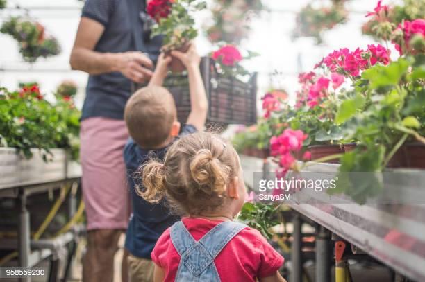 Little greenhouse gardeners