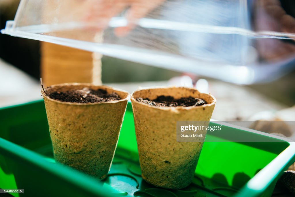 A little greenhouse with pots. : Stock Photo