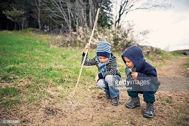 Little hikers observing an earthworm