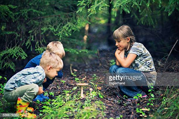 Little hikers picking mushrooms in forest