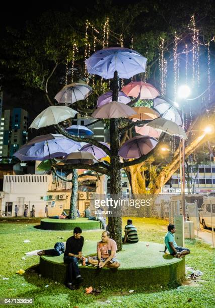 little india singapore - installation art stock pictures, royalty-free photos & images