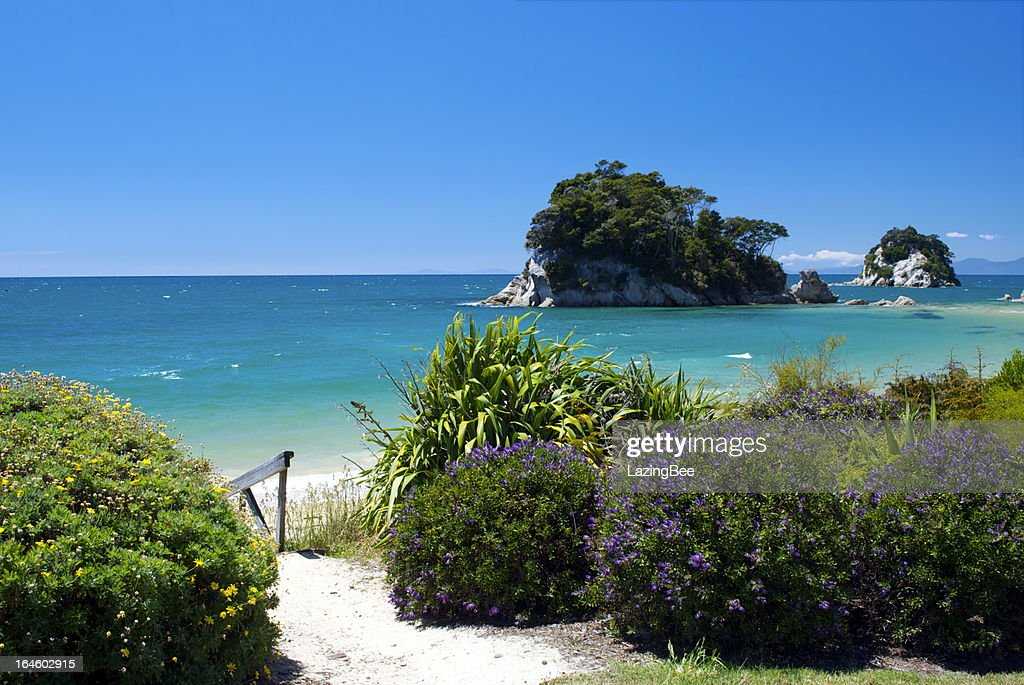 Little Kaiteriteri Beach Access, Tasman Region, New Zealand : Stock Photo