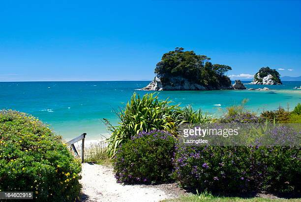 Little Kaiteriteri Beach Access, Tasman Region, New Zealand