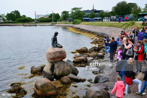 little mermaid statue, copenhagen - copenhagen stock pictures, royalty-free photos & images