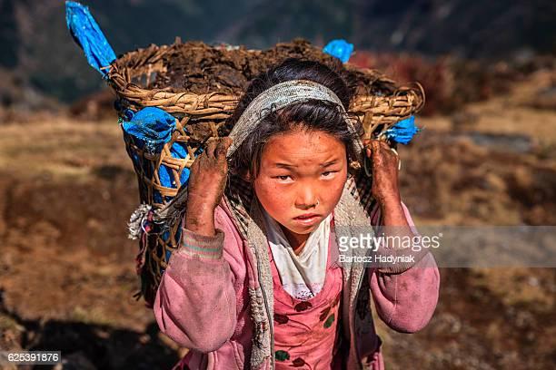 小さな女の子用のネパールで 40 kg ヤクのズン  - ネパール ストックフォトと画像