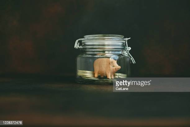 531 Donation Box Ideas Photos And Premium High Res Pictures Getty Images