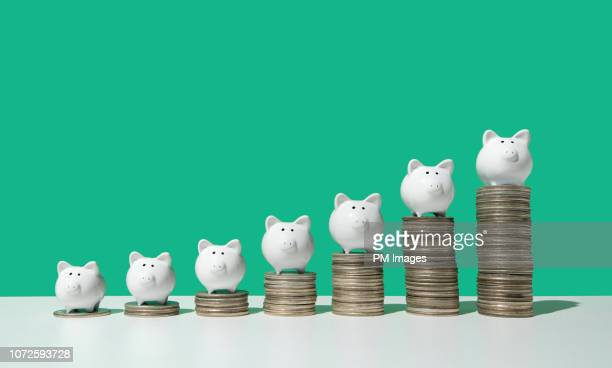 little piggy banks on ascending stacks of coins - ersparnisse stock-fotos und bilder