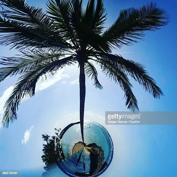 Little Planet Format Of Palm Tree At Beach Against Sky