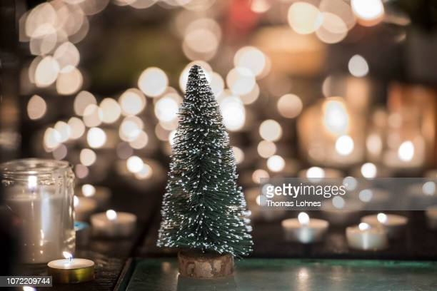 60 Top Plastic Christmas Tree Pictures Photos Images Getty Images