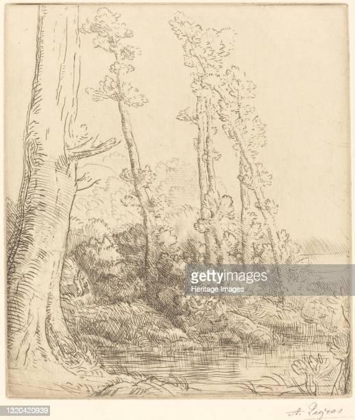 Little Pond . Artist Alphonse Legros.
