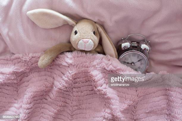 little rabbit wake up - funny wake up stock pictures, royalty-free photos & images