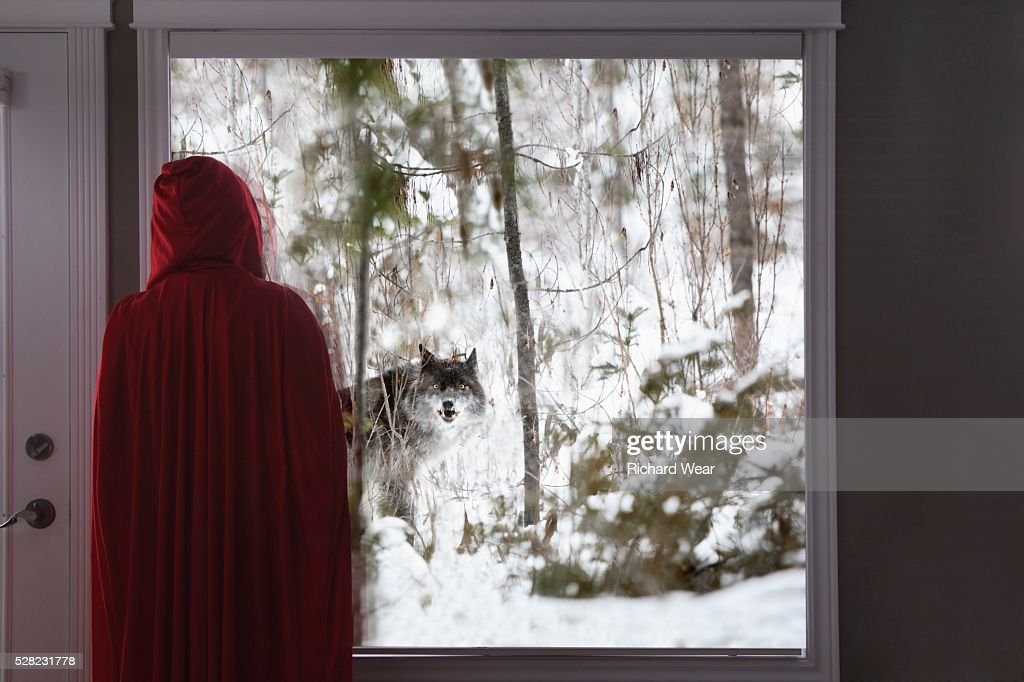 Little red riding hood looking out window at big bad wolf : Foto de stock