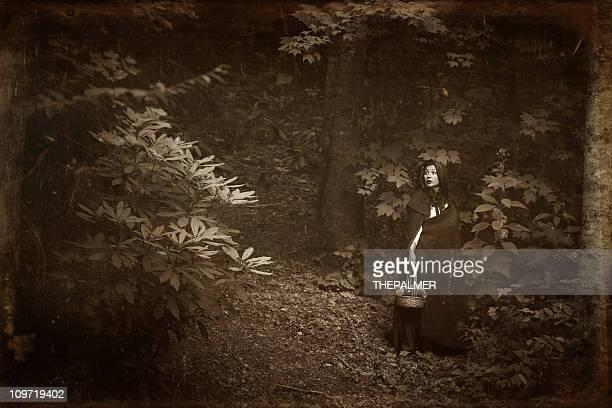 Caperucita roja en el bosque perdido