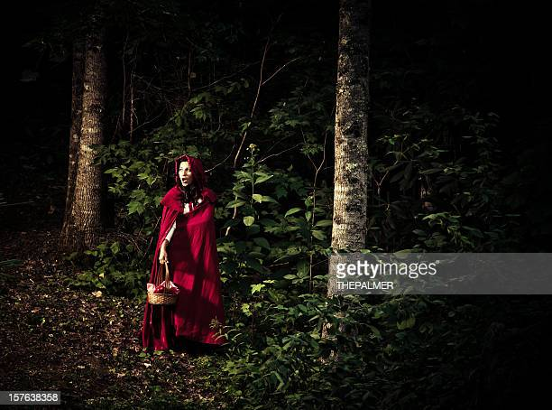 Little Red Riding Hood lost in the forest