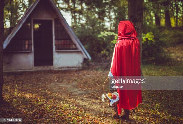 petit chaperon rouge - le petit chaperon rouge photos et images de collection
