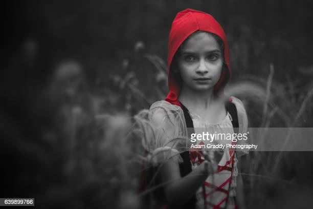 little red riding hood - isolated color stock pictures, royalty-free photos & images