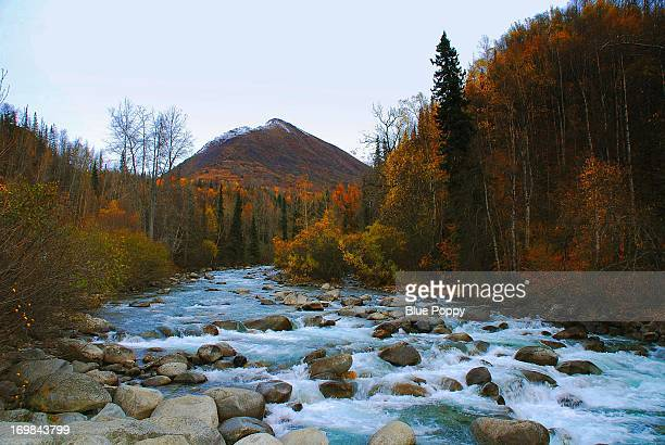 little susitna river, alaska - mt. susitna stock pictures, royalty-free photos & images