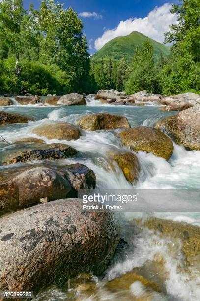 little susitna river - mt. susitna stock pictures, royalty-free photos & images