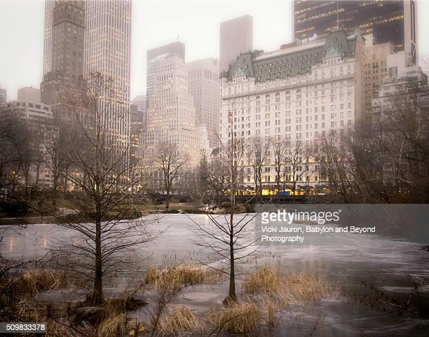 a little touch of snow on a frozen duck pond in central park - hotel plaza manhattan stock-fotos und bilder