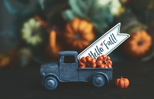 Little truck with load of miniature pumpkins for fall and Thanksgiving 1171152567
