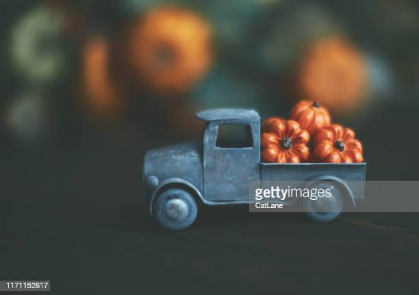 little truck with load of miniature pumpkins for fall and thanksgiving - thanksgiving cat stock pictures, royalty-free photos & images