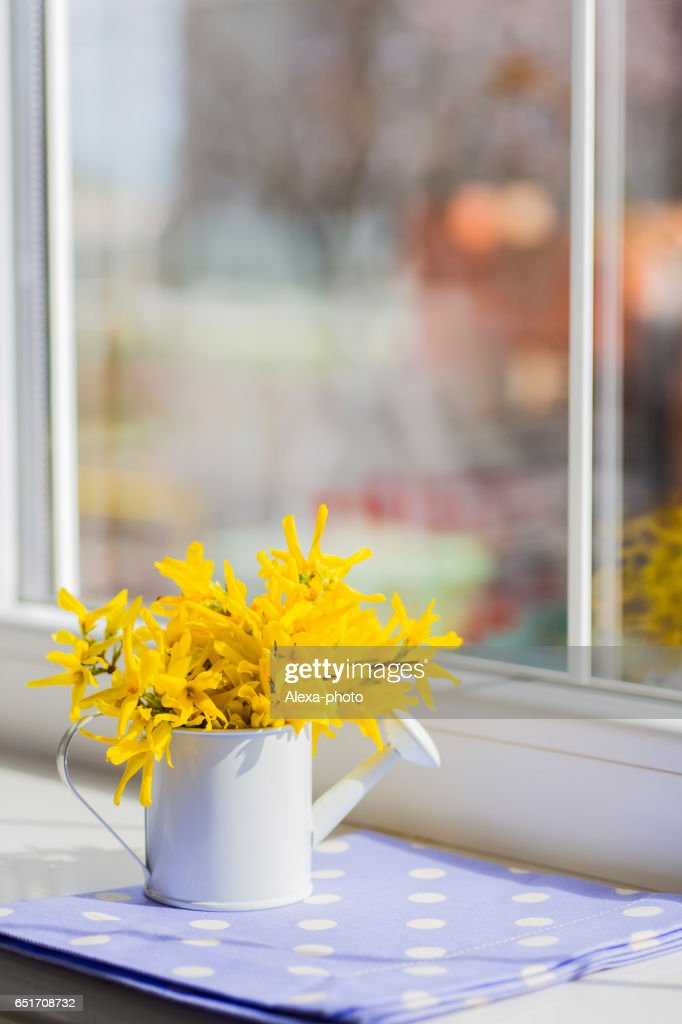 Little Watering Can With Spring Flowers Bouquet Near The Window Stock Photo