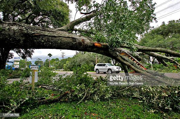 A Live Oak is down in front of the American Legion Post 178 in Murrells Inlet in Pawleys Island South Carolina Saturday August 27 after Hurricane...