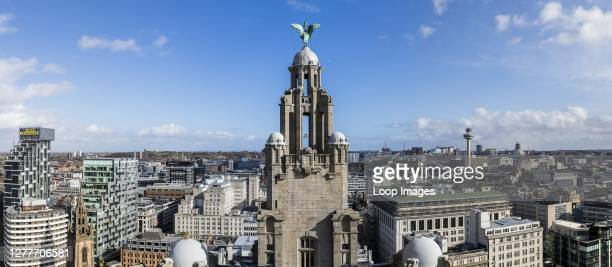 Liver Bird on the Royal Liver Building facing across the city of Liverpool.