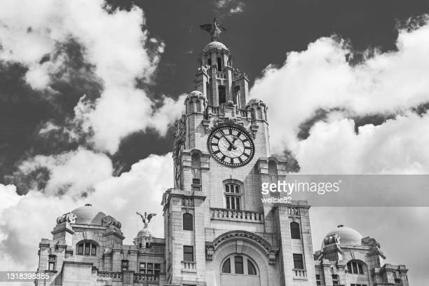 liver birds overlooking the liverpool waterfront - liverpool england stock pictures, royalty-free photos & images