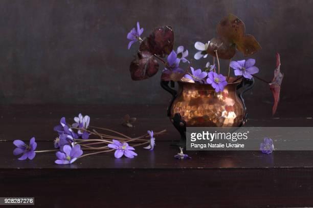 liverleaf bouquet in copper footed bowl - natureza morta - fotografias e filmes do acervo