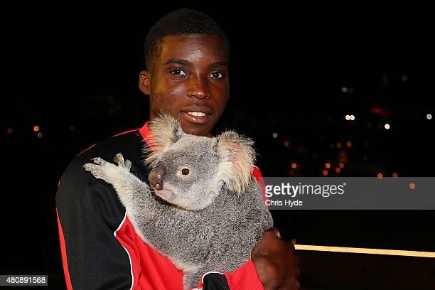 Liverpool FC player Sheyi Ojo cuddles Australia Zoo koala Mackenzie at Gambaro Hotel on July 16 2015 in Brisbane Australia Liverpool FC are in...