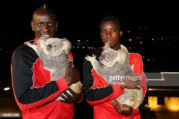 Liverpool FC players Mamadou Sakho and Sheyi Ojo cuddle Australia Zoo koalas Mackenzie and India at Gambaro Hotel on July 16 2015 in Brisbane...