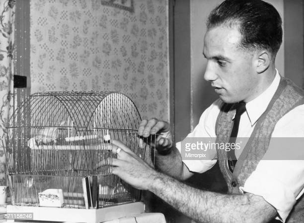 Liverpool full back Ronnie Moran with Joey, his pet canary at home.26th October 1955.