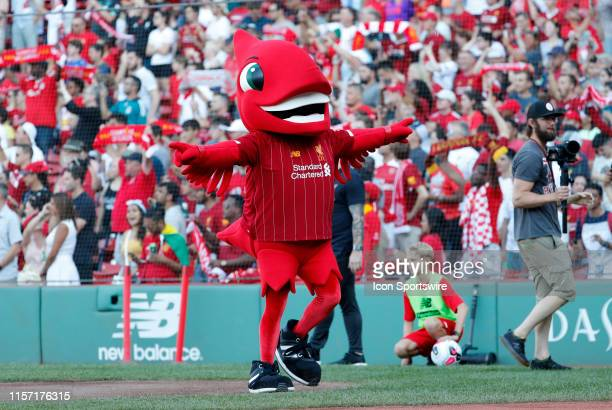 Liverpool mascot Mighty Red before a club friendly between Liverpool FC and Sevilla FC on July 21 at Fenway Park in Boston Massachusetts