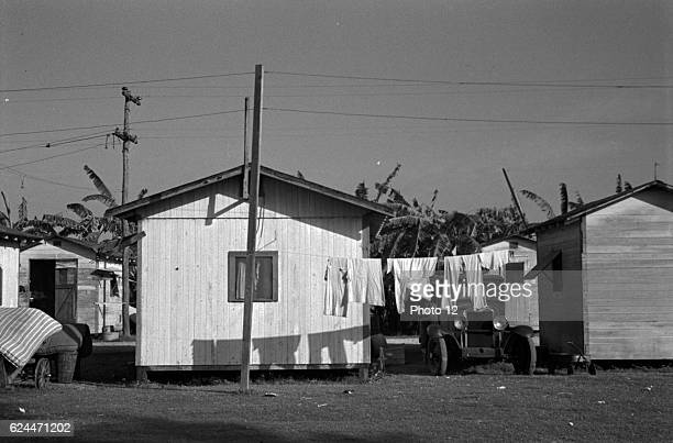 Living conditions among the migrant fruit workers in a tourist camp near Belle Glade Florida 1937¾by Dorothea Lange 18951965