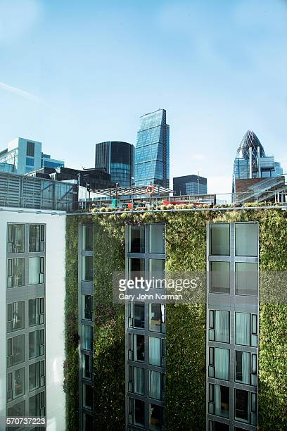 a living green wall in centre of london, uk - building exterior stock pictures, royalty-free photos & images